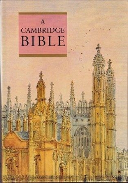 LARGE PRINT TEXT BIBLE
